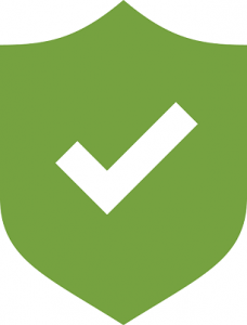 Green Cyber Security icon