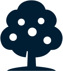 Established Businesses Full Grown Tree Icon
