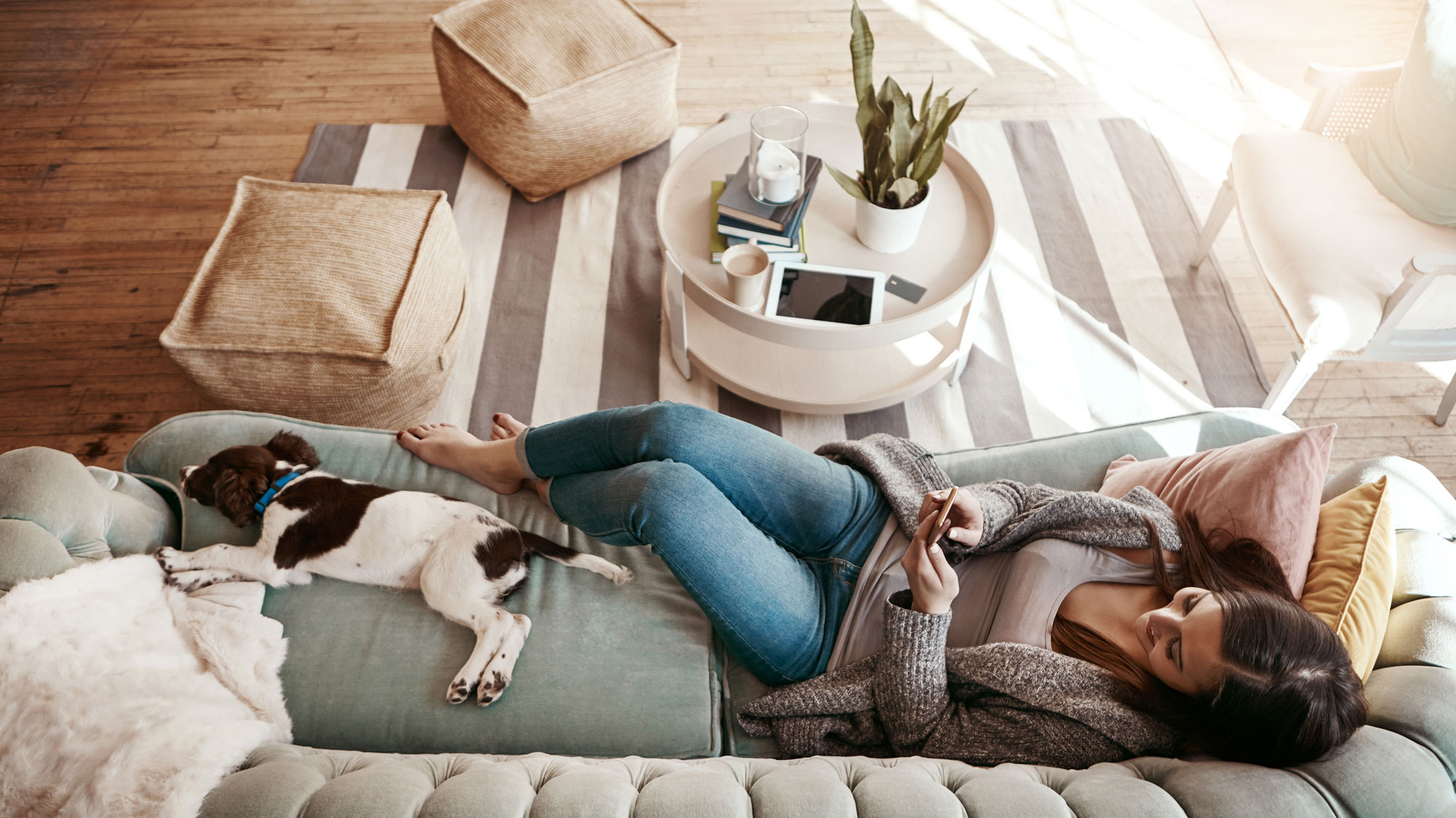 Young woman looking at her phone while laying on a couch with a dog