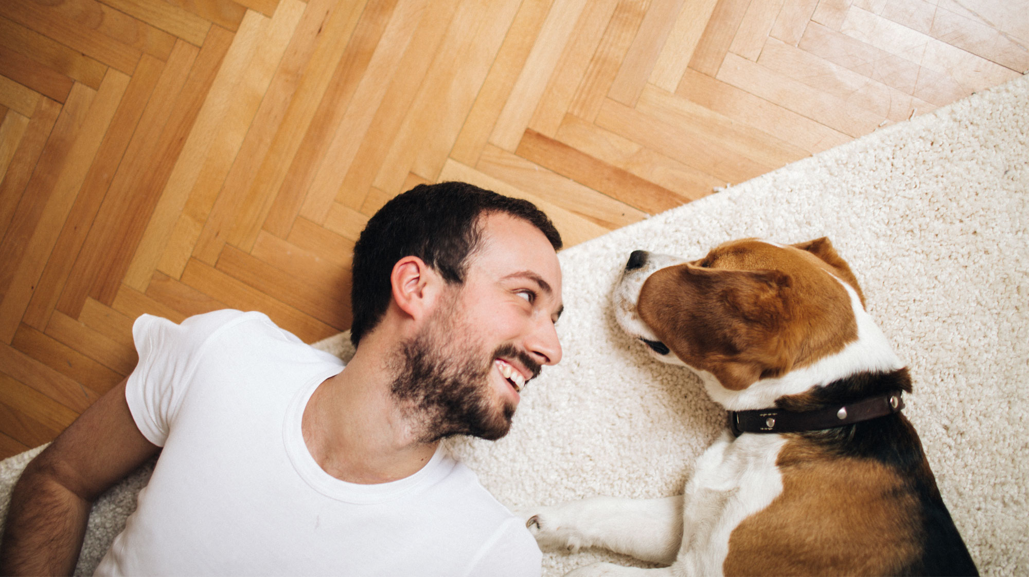 man laying with dog