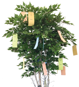 Wish-Tree-Cropped