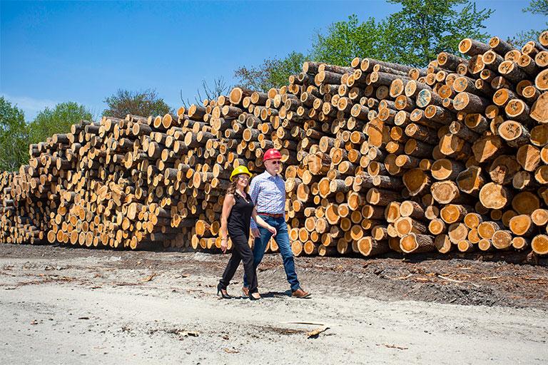 Hancock Lumber CFO with GSB lender